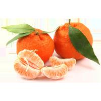 мандарины, фрукты